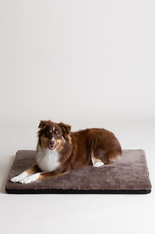"Overland 24"" x 35"" Large Sheepskin Pet Cushion"