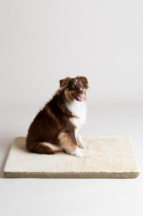 "Overland 23.5"" x 35.5"" Large Sheepskin Pet Cushion"