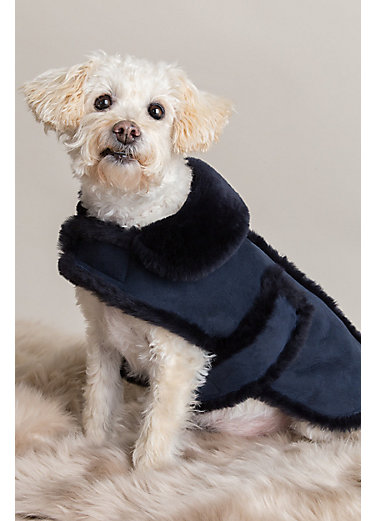 Spanish Shearling Sheepskin Dog Coat - Small