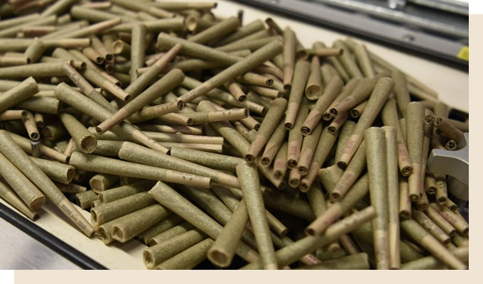 Getting Started With Cannabis Pre-Rolls