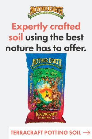Mother Earth Terracraft Potting Soil 2CF
