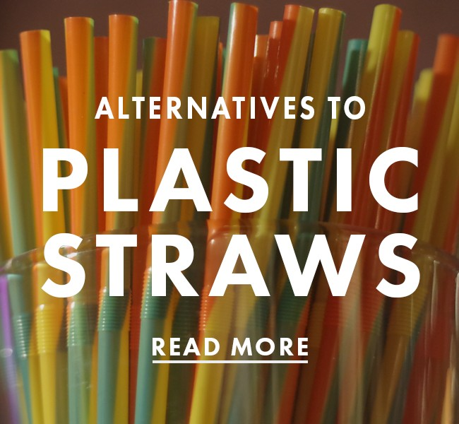 Alternatives to Plastic Straws: A Definitive Guide