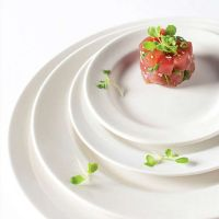 Fine Dinnerware Products For The International Marketplace